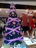 聖誕節…充滿耶誕氣氛的聖誕紅、聖誕樹 …:IMG_20151219_214332.jpg