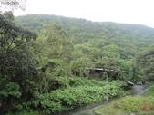 陽明山、竹子湖、碧潭一日遊…:DSC01327.JPG
