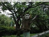 陽明山、竹子湖、碧潭一日遊…:DSC01345.JPG