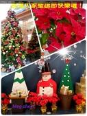 聖誕節…充滿耶誕氣氛的聖誕紅、聖誕樹 …:15-12-24-22-31-17-570_deco.jpg