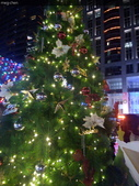 聖誕節…充滿耶誕氣氛的聖誕紅、聖誕樹 …:IMG_20151219_205222.jpg
