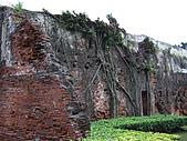 DAY 1~府城懷古:老樹盤根
