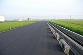 田尾公路花園單車行:DSC_2627.JPG