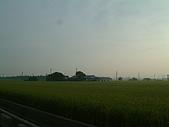田尾公路花園單車行:DSCF0001.JPG