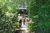 田尾公路花園單車行:DSC_2698.JPG