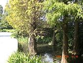 田尾公路花園單車行:CIMG3153.JPG
