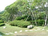 田尾公路花園單車行:DSCF0024.JPG