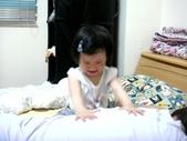 阿里山茶葉男:DSC01067.JPG