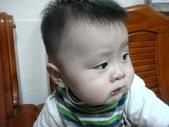 阿里山茶葉男:DSC01939.JPG