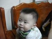 阿里山茶葉男:DSC01938.JPG