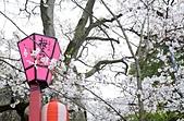 和歌山城の美:關西和歌山城の櫻