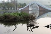 大湖公園霧之晨:DSC_3115.jpg