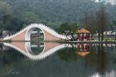 大湖公園霧之晨:DSC_3207.jpg