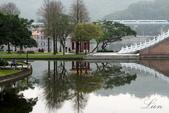 大湖公園霧之晨:DSC_3155.jpg