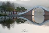 大湖公園霧之晨:DSC_3123.jpg