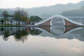 大湖公園霧之晨:DSC_3130.jpg
