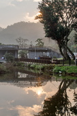 大湖公園霧之晨:DSC_3118.jpg