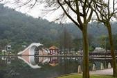 大湖公園霧之晨:DSC_3198.jpg