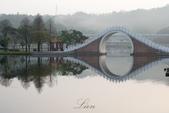 大湖公園霧之晨:DSC_3117.jpg