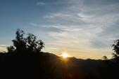 阿里山之旅(三):DSC_2432.jpg