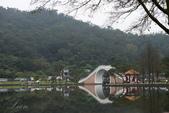 大湖公園霧之晨:DSC_3196.jpg