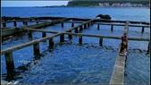 黃金瀑布,龍洞,鼻頭漁港:DSC04482.JPG