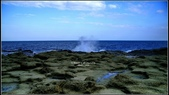 黃金瀑布,龍洞,鼻頭漁港:DSC04495.JPG