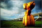 最近倍受爭議ㄉ黃金氣球貴賓狗:DSC03641.JPG