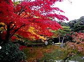 日本關西自由行:京都-金閣寺