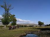 新疆 - 北疆:那拉提草原