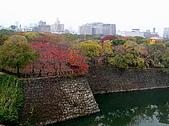 日本關西自由行:大阪-天守閣