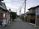 日本關西自由行:京都 - 仁和寺附近