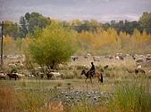 新疆 - 北疆:沿途風光