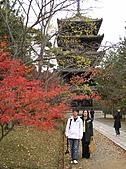 日本關西自由行:京都 - 仁和寺