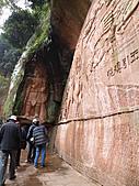 中國大西南粵桂滇黔川之旅 (十六) - 四川之三:蜀南竹海-翡翠長廊