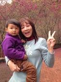 個人生活照:2月16號 大發sirion之台七丙台七甲山道賞花之旅 2014-6.JPG