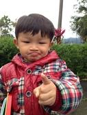 個人生活照:2月16號 大發sirion之台七丙台七甲山道賞花之旅 2014-2.JPG