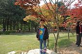 2009 韓國趣:DSC_0339.JPG