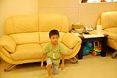 魁魁就快滿5歲囉:DSC_0014.JPG