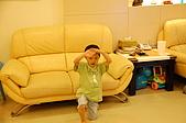 魁魁就快滿5歲囉:DSC_0016.JPG