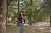2009 韓國趣:DSC_0346.JPG