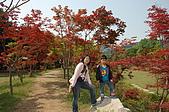 2009 韓國趣:DSC_0334.JPG