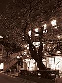 20081031 GRE in Tokyo:IMG_0495.JPG