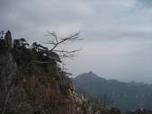 黃山 2012 10 20:照片 175.jpg