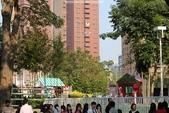 2013泰迪熊台中樂活嘉年華(秋紅谷&草悟大道&市民廣場)~102.11.30:串門子也要排隊唷