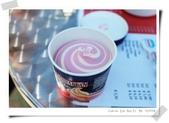 100.5.11奧捷之旅DAY2:船上賣的冰淇淋