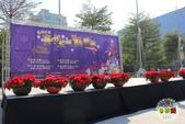 【編號16新社紫風車熊】回到台中市政府~102.12.05:IMG_1086.jpg