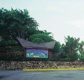 印尼:巴淡一景