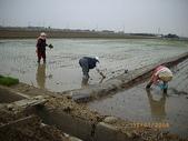 白河970118:農婦三