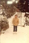 河內長野:河內長野的雪